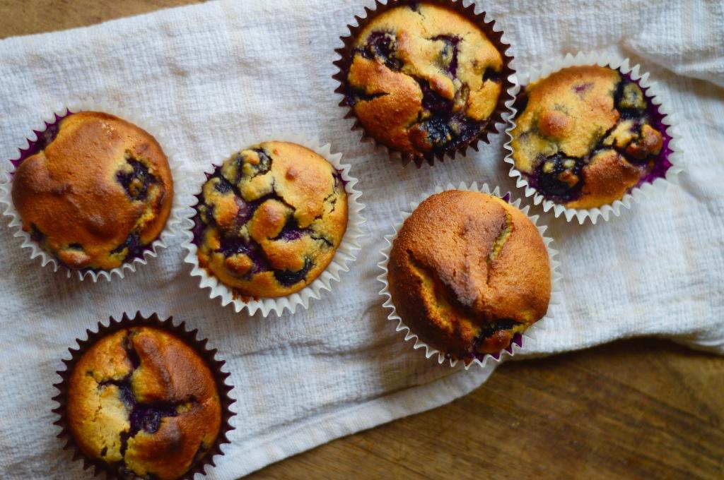 Stacey Hogan Dementia Healthy Cupcake Recipe