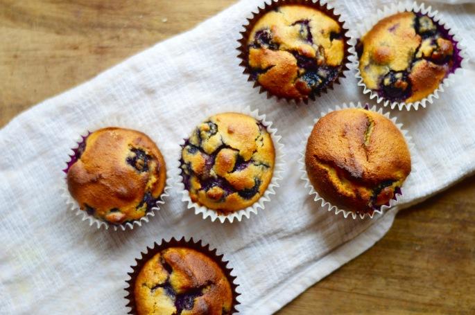 stacey hogan healthy cupcakes