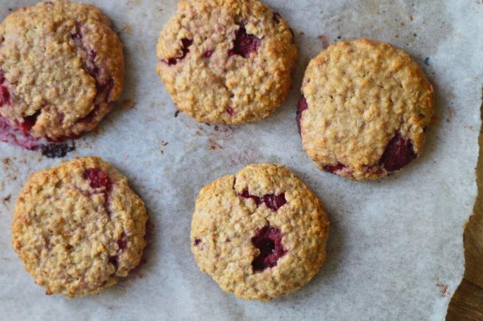 Stacey Hogan Oat Granola Cookies